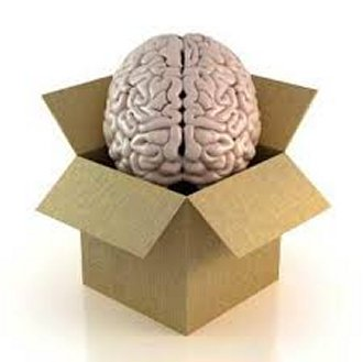 Hjernekassen